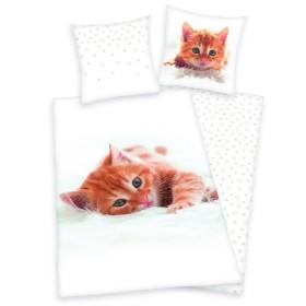 Obliečky Koťátko zrzavé - 140x200, 70x90 - 100% bavlna