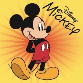 Magický froté ručníček Mickey FR 05 - 30x30 cm, 100% bavlna