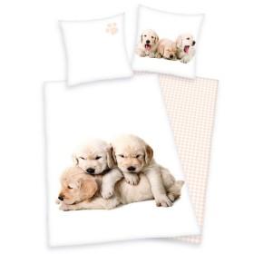 Obliečky Štěňátka labradora - 140x200, 70x90 - 100% bavlna